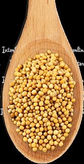 Зерно горчицы желтой