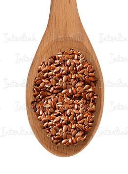 Лен семена (Украина)