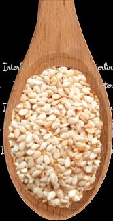 Кунжут семя (Индия) 99,95