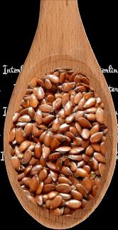 Лен семена украина
